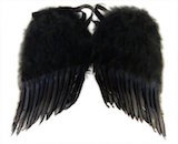 "Angel Wings, 22"" Black Feather"